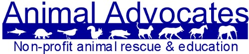 Mary Cummins, Animal Advocates, Cummins Real Estate Services in Los Angeles, California